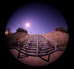 月夜の砂丘入り口