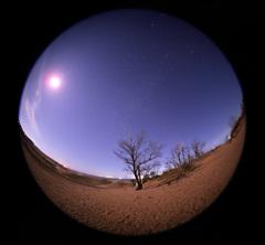月夜の砂丘