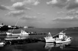 牡蠣船の休息