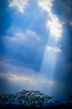 天使の梯子が架かるとき