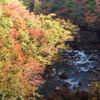 秋の松川渓谷
