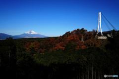 快晴の富士と三島スカイウォーク