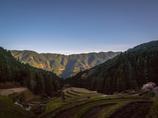 Rice terrace of Kashihara