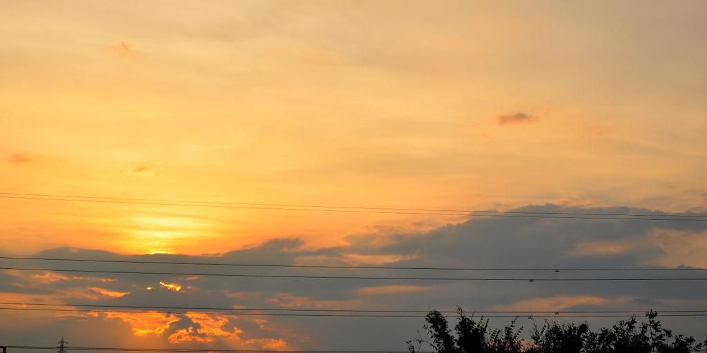 夏の夕焼け ワイド板