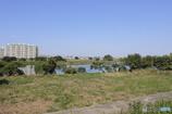 多摩川の登戸風景