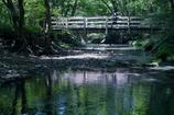 清流に架かる橋