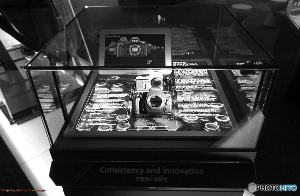 普遍性と革新性 (Consistency and innovation)