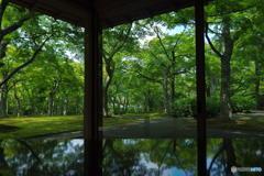 茶室「真和亭」にて その6