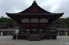 雨の下鴨神社にて その3