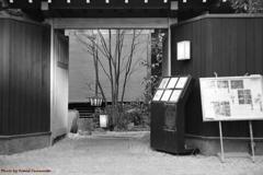 ご隠居(Nikon SP)の試写(神楽坂編) その7