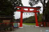 雨の上賀茂神社にて その1