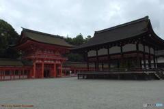 雨の下鴨神社にて その2
