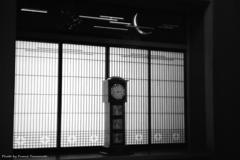 ご隠居(Nikon SP)の試写(柴又 山本亭編) その4