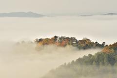 天空の城 備中松山城
