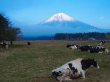 まあ天気も良いしゆっくり富士山でも見ていきなよ
