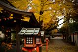 11月の神社