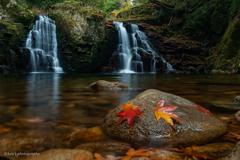 赤と黄色と双竜の滝と