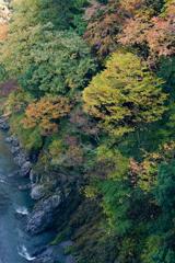 上から見た鳩ノ巣渓谷