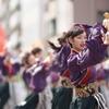 踊りゃん祭