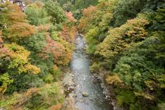 秋色に染まり始める奥多摩渓谷