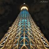 THE TOWER Ⅱ