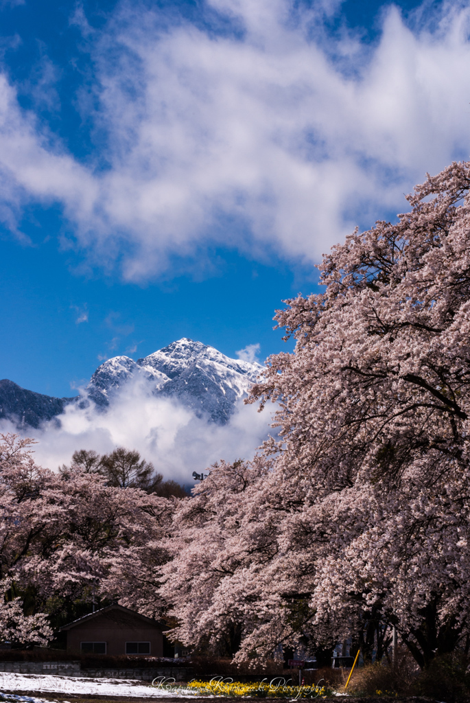 雲沸く春甲斐駒