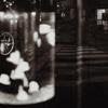 jellyfish street