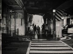 osaka street snap ~zebra crossing~