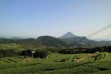大野岳より~山間部の茶