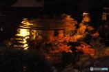 鎌倉Now07(長谷寺)