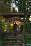 鎌倉Now02(浄智寺)