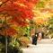 鎌倉Now04(海蔵寺1)
