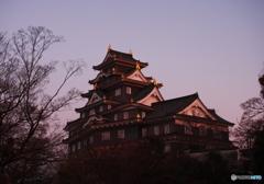 染まる岡山城