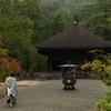 秋雨の阿弥陀堂