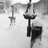 冬(フィルム)