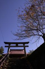 八幡神社の秋