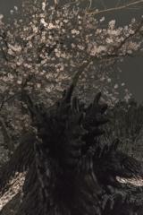 桜の下で眠れ