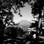 松林と富士山