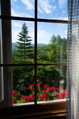 ある窓からの景色