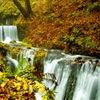 白糸の滝 秋景2