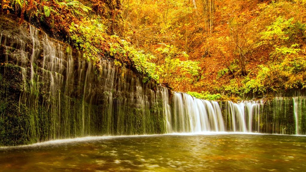 白糸の滝 秋景