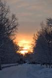 ふらり散歩 寒い朝