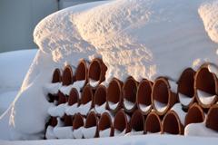 ふらり散歩 朝陽の雪肌