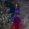 桜咲く東京タワー