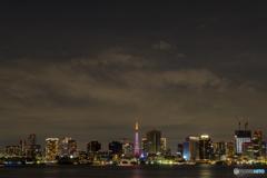 東京タワーと湾岸