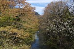広瀬川源流