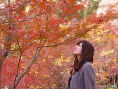 葉 照れる