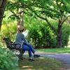 日曜日のベンチ
