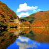庄川峡紅葉