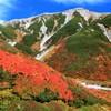 紅葉の立山#1